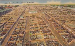 Nebraska Omaha Union Stock Yard Pens