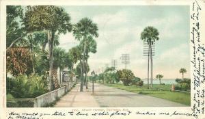 Beach Street Daytona Florida 1906 Postcard Detroit Publishing undivided 583