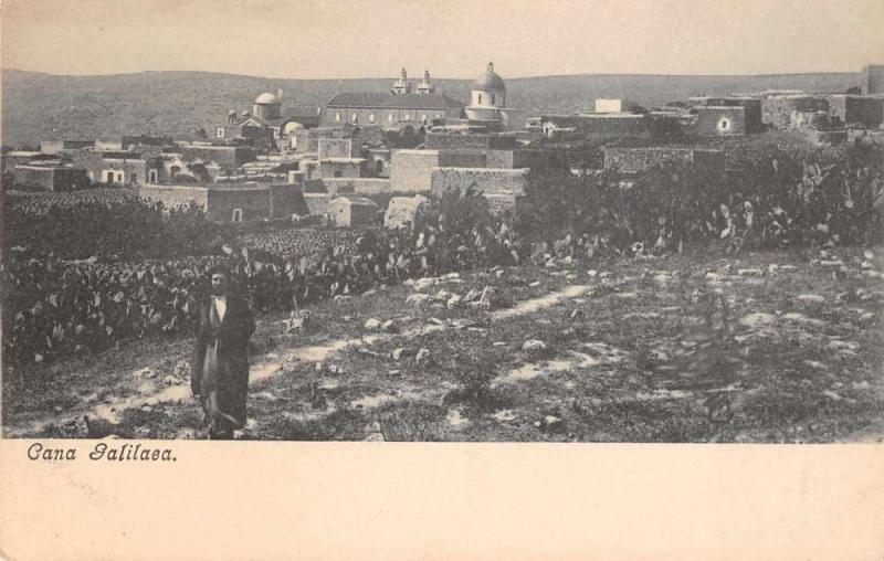 Galilaea Israel City and Fields Galilee Antique Postcard J45930