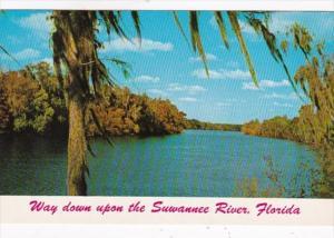Florida Scene Way Down Upon The Suwannee River