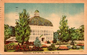 Maryland Baltimore Druid Hill Park The Conservatory 1940 Dexter Press