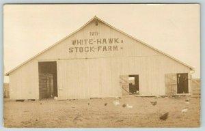 Real Photo Postcard~White Hawk Stock Farm Barn~Chickens in Barnyard~1911 RPPC
