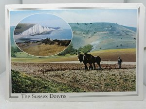 Vintage Multiview Postcard Farmer Ploughing Field with Shire Horses Sussex Downs