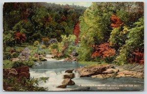 Asheville North Carolina Publisher (Brown Book)~SHARP* Mountain Stream~c1910 PC