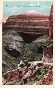 near Phoenix, Arizona, AZ, Fish Creek Canyon, Unused Vintage Postcard g1563