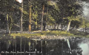 Pottersville New Jersey~Shady Glen at Picnic Grounds~Trees Reflect~1910 Postcard