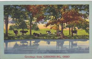 Ohio Greetings From Gibsonburg 1954