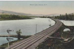 New York Oneonta Electric Lake