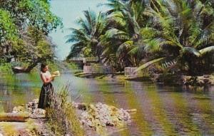 Jamaica Ocho Rios White River Scene