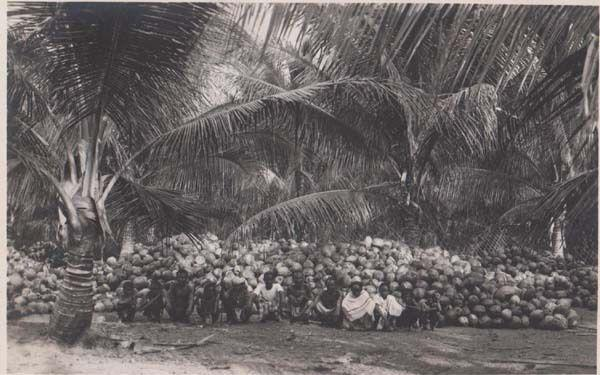 Singapore Group Of Natives Vegetable Tribe Fruit Farm WW2 Real Photo Postcard