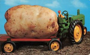Postcard An Idaho Potato