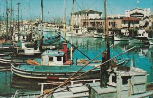 California San Francisco Fisherman's Wharf Fishing Boats 1958