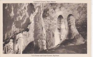 New Mexico Carlsbad Caverns Twin Domes and Giant Column In Big Room