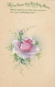 Joy be Yours this BIRTHDAY Morn, 1900-10s; Pink Rose