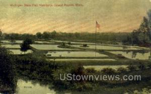Michigan State Fish Hatchery Grand Rapids MI 1912 Missing Stamp