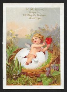 VICTORIAN TRADE CARDS (3) HM Baum Importer Baby Coming Out of Egg Shells