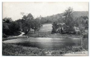 Early 1900s Corner of Lake, Grand View, Wernersville, PA Postcard *5I2