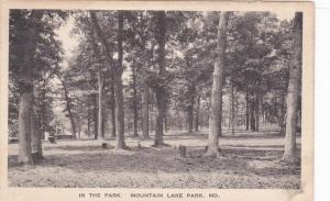 MARYLAND, 1900-1910's; In The Park, Mountain Lake Park