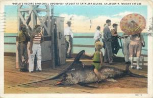 World`s Record Broadbill Swordfish caught at Catalina Island California