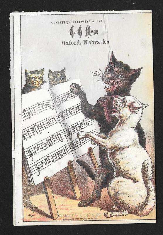 VICTORIAN TRADE CARD Brown Medicine Cats w/Sheet Music