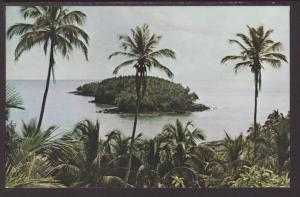 Devil's Island,French Guiana Postcard