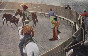 Mexican Bull Fight Picator Engaging Bull