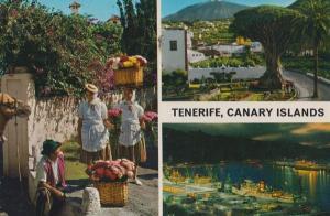 Tenerife Canary Islands Flower Sellers Lady Costume Postcard