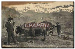 Old Postcard Hitching the Cevennes Mountain