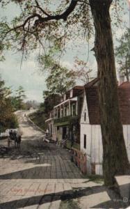 Canada Quebec Cilery Road