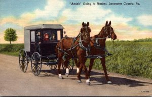 Pennsylvania Lancaster County Amish Going To Market Horse and Buggy 1954 Curt...