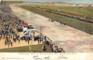 Brooklyn New York Sheepshead Bay Suburban Day Antique Postcard K97038