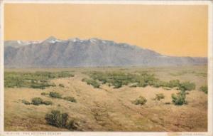Fred Harvey The Arizona Desert Detroit Publishing