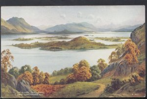 Scotland Postcard - The Islands, Loch Lomond From Camstradden Hill  DC2232