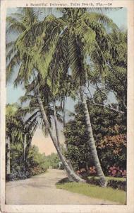 Florida Palm Beach A Beautiful Driveway