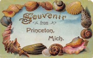Souvenir from Princeton Michigan~Seashell Border~Gold Leaf Emboss~1908 Postcard
