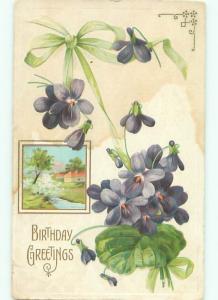 Divided-Back BEAUTIFUL FLOWERS SCENE Great Postcard AA4008