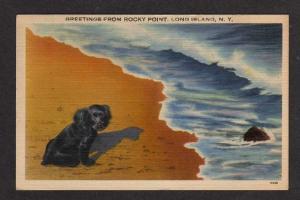 NY Greetings ROCKY POINT Long Island LI NEW YORK Dog PC