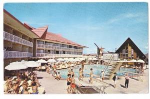 AlgerMiami Beach FL Resort Motel The Castaways Swimming Pool View Vntg 1964 Post