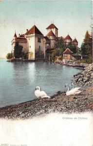 Veytaux Switzerland~Chateau de chillon (Chillon Castle)~Geese on Shore~c1910 Pc