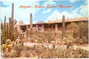 Arizona-Sonora Desert Museum, Tucson Mountain Park Arizona AZ, Chrome