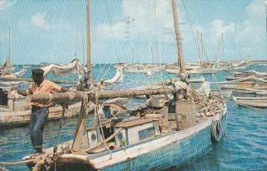 Bahamas Nassau Fishing Smacks In The Harbour 1961