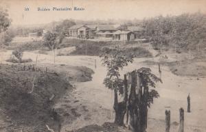 Indian Rubber Plantation Estate Old Postcard