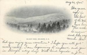 Shelburne New Hampshire~Baldcap Range Vignette~Snow Mountains~Evergreens~1905