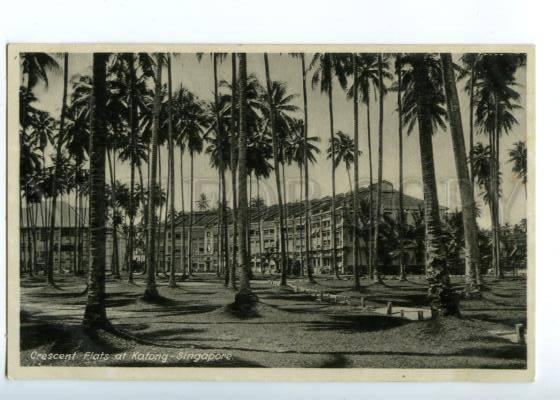 151569 SINGAPORE Crescent Flats at KATONG Vintage postcard
