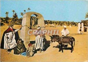 Modern Postcard Ghardaia Algeria Oasis A well in Zab Donkey Mule