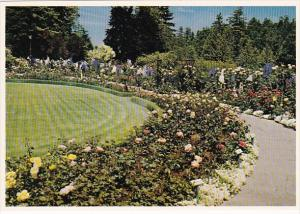 Canada Victoria The Butchart Gardens The Rose Garden