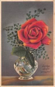 Szivelyes udvozlet Nevnapjara! Rose Vase, Name day Greetings!