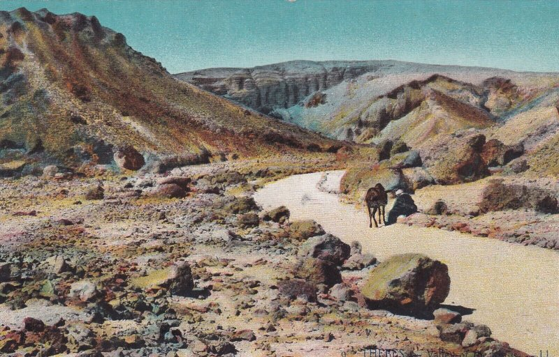 EGYPT , 00-10s ; THEBES ; Road