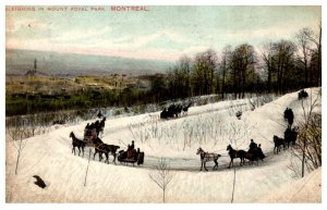 Canada Montreal Sleighing in Mount Royal Park