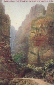 ROOSEVELT , Arizona, 1900-10s ; Bridge over Fish Creek